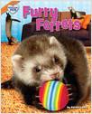 Cover: Furry Ferrets