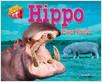 Cover: Hippo