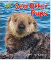 Cover: Sea Otter Pups