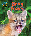 Cover: Gray Foxes