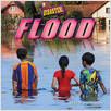 Cover: Flood