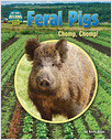 Cover: Feral Pigs