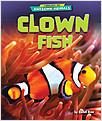 Cover: Clown Fish