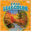 Cover: Fall Leaf Color