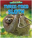Cover: Three-Toed Sloth