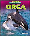 Cover: Orca