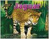 Cover: Jaguar