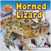 Cover: Horned Lizard