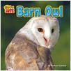 Cover: Barn Owl