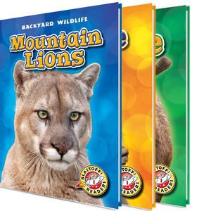 Cover: Backyard Wildlife
