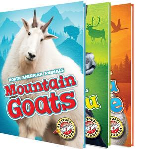 Cover: North American Animals