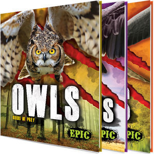 Cover: Birds of Prey