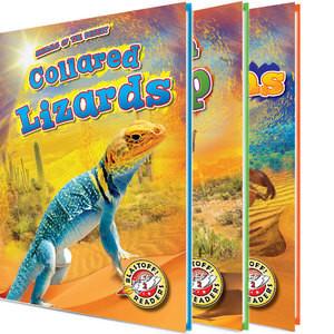 Cover: Animals of the Desert