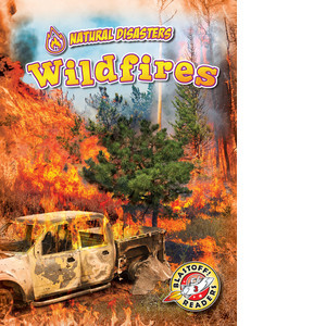 Cover: Wildfires