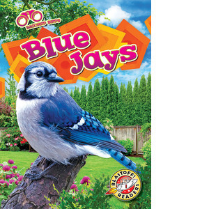 Cover: Blue Jays