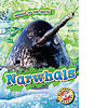 Cover: Narwhals