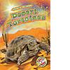 Cover: Desert Tortoises