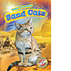 Cover: Sand Cats