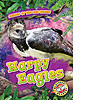 Cover: Harpy Eagles