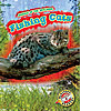 Cover: Fishing Cats