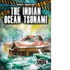 Cover: The Indian Ocean Tsunami