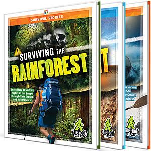 Cover: Survival Stories