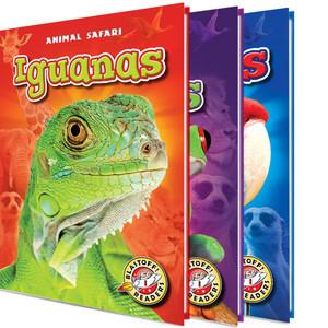 Cover: Animal Safari