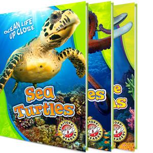 Cover: Ocean Life Up Close