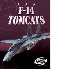 Cover: F-14 Tomcats