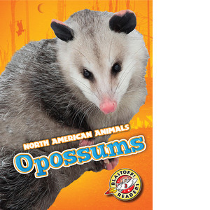 Cover: Opossums