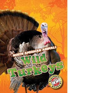 Cover: Wild Turkeys