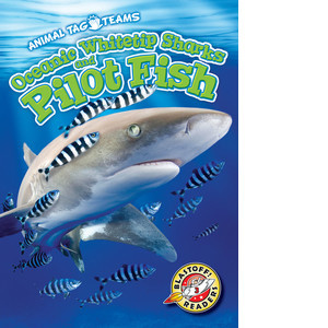 Cover: Oceanic Whitetip Sharks and Pilot Fish
