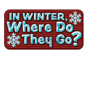 Cover: In Winter, Where Do They Go?
