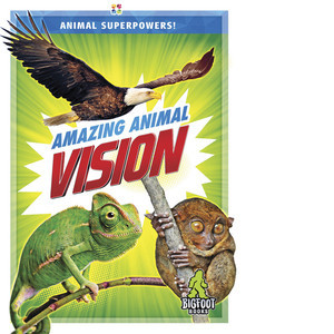 Cover: Amazing Animal Vision