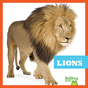Cover: Lions