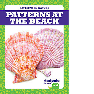Cover: Patterns at the Beach