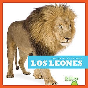 Cover: Los leones (Lions)
