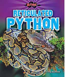 Cover: Reticulated Python