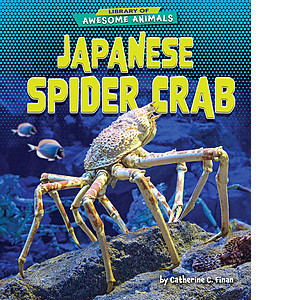 Cover: Japanese Spider Crab