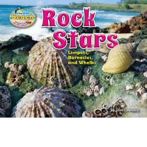 Cover: Rock Stars: Limpets, Barnacles, and Whelks
