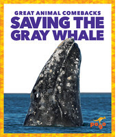 Cover: Saving the Gray Whale