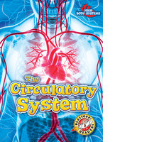 Cover: The Circulatory System