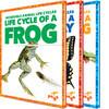 Cover: Incredible Animal Life Cycles