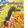 Cover: Seahorse Fry