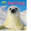 Cover: Seal Pups