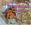 Cover: Inside the Tarantula's Burrow