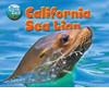 Cover: California Sea Lion