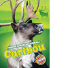 Cover: Caribou