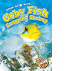Cover: Goby Fish and Snapping Shrimp