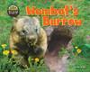 Cover: Wombat's Burrow